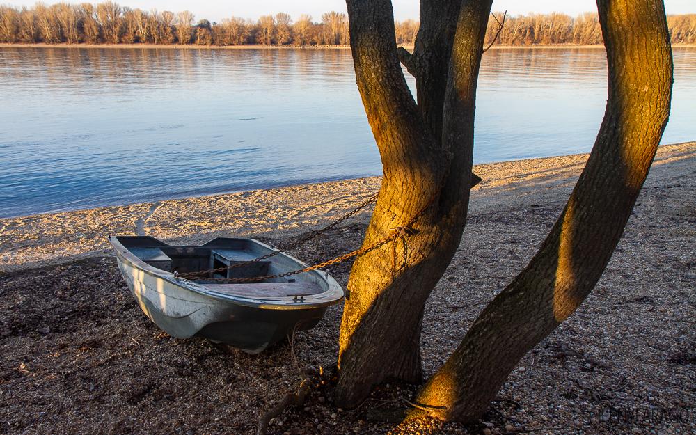 Télfények (Duna, 2020. február 1.)