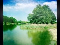 Tavaszi zsendülés (Halászi, 2012. május 1.)