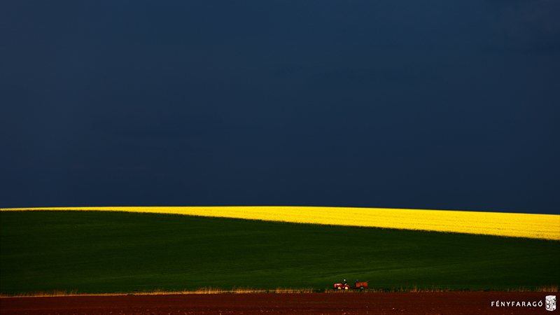 Mezőgazdasági táj