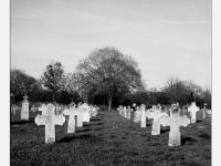 Kereszt-út (Mindszent, 2013. október 29.) (Yashica Mat 124 G, Kodak TRI-X)