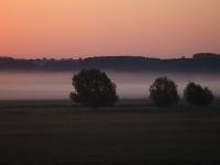 A hajnal pompája (2011. október 2.)