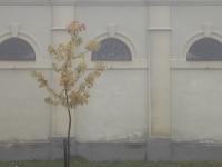 Ködbe bújt ódon ritmika (Kőhányás, 2011. október 23.)