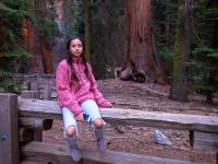 Óriások földjén - Sequoia Nemzeti Park (USA)