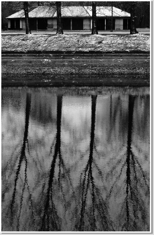 Víz-tükör
