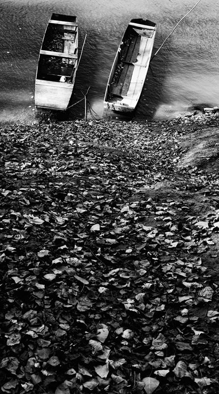 Őszi part (Mártély, 2013. október 29.)