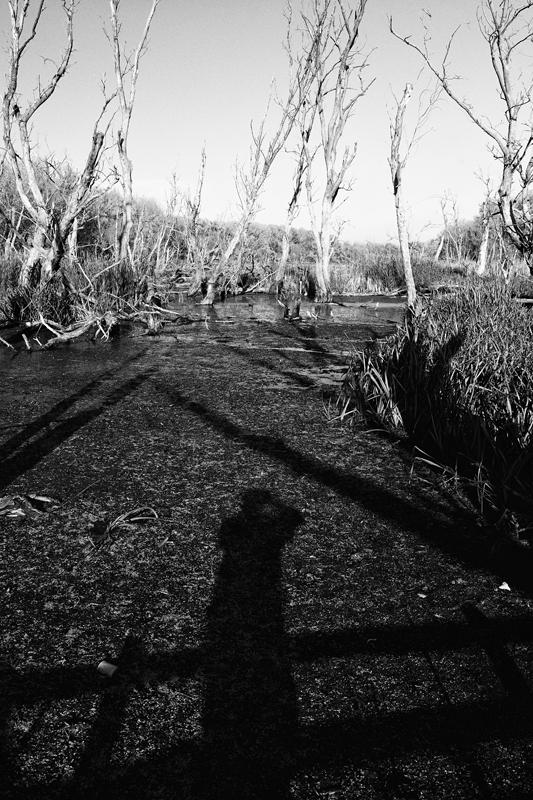 Önmagam árnyéka (Mártély, 2013. október 28.)