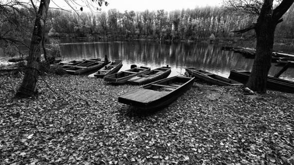 Őszi part (Mártély, 2013. november 1.)