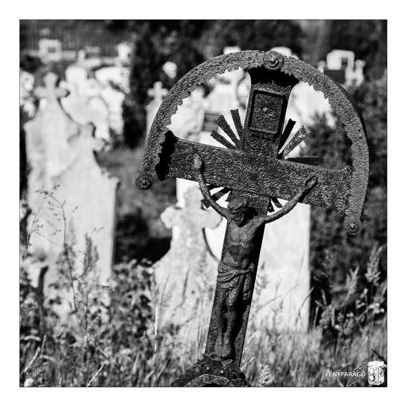 Keresztek (Máriahalom, 2015. június 21.) | Crosses (Máriahalom, 21th Jun, 2015.)