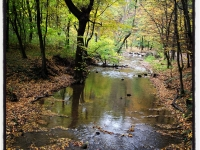 Őszi patak (2012. október 30.)