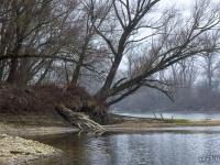 Januári táj (Duna, 2020. január 26.)