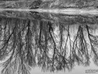 Téli tükör (Duna. 2020. január 26.)