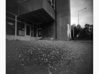 Az elhagyott buszmegálló (Tatabánya, 2014. május) (Papír lyukkamera, B&W 100 film)