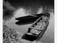 Tisza-parti csendélet (2013. október 29.)  (Yashica Mat 124 G, Kodak TRI-X)