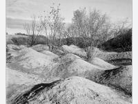 Felhagyott bánya (Gánt, 2013.)  (Yasahica Mat 124G, Kodak TRI-X 400)