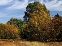 Az Ősz melege (Bugac, 2011. szeptember 30.)