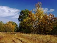 Őszi fuvallatok (Bugac, 2011. szeptember 30.)