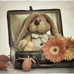 Húsvéti képeslapok, poszterek rendelhetők!